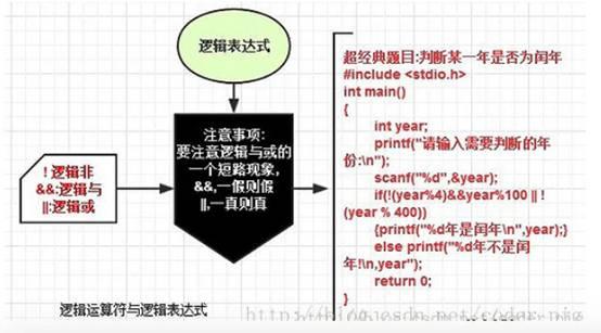 C语言基础学习笔记07